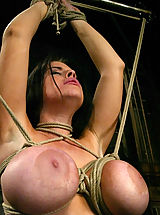 Big.Tits Babes: Daphne's huge 36G breasts get tighly bound.