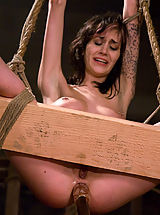 Pussy Babes: lesbian Domination with bondage and strapon sex.
