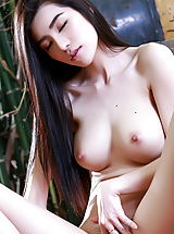Asian Babes: Maple