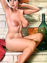 Hard Nipple Babes: Blast from the Past Sex